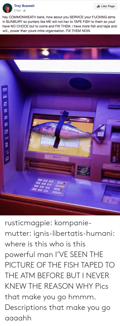 Fucking, Tumblr, and Bank: Troy Buswell  2hrs .  Like Page  hey COMMONWEATH bank, how about you SERVICE your FUCKING atms  in BUNBURY so punters like ME will not hav to TAPE FISH to them so youll  have NO CHOCE but to come and FIX THEM. i have more fish and tape and  will, power than youre intire organisation. FIX THEM NOW. rusticmagpie: kompanie-mutter:   ignis-libertatis-humani: where is this who is this powerful man I'VE SEEN THE PICTURE OF THE FISH TAPED TO THE ATM BEFORE BUT I NEVER KNEW THE REASON WHY   Pics that make you go hmmm. Descriptions that make you go aaaahh