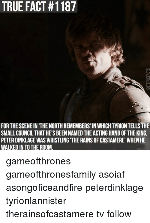 Memes, True, and Peter Dinklage: TRUE FACT #1187  SMALL COUNCIL THAT HE'S BEEN NAMED THE ACTING HAND OF THE KING,  PETER DINKLAGE WAS WHISTLING THE RAINSOF CASTAMERE WHEN HE  WALKED IN TO THE ROOM. gameofthrones gameofthronesfamily asoiaf asongoficeandfire peterdinklage tyrionlannister therainsofcastamere tv follow