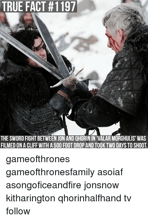Memes, True, and Sword: TRUE FACT #1197  THE SWORD FIGHT BETWEEN JON AND QHORIN IN 'VALAR MORGHULIS WAS  FILMEDONA CLIFF WITH A500 FOOT DROP AND TOOK TWO DAYSTO SHOOT gameofthrones gameofthronesfamily asoiaf asongoficeandfire jonsnow kitharington qhorinhalfhand tv follow
