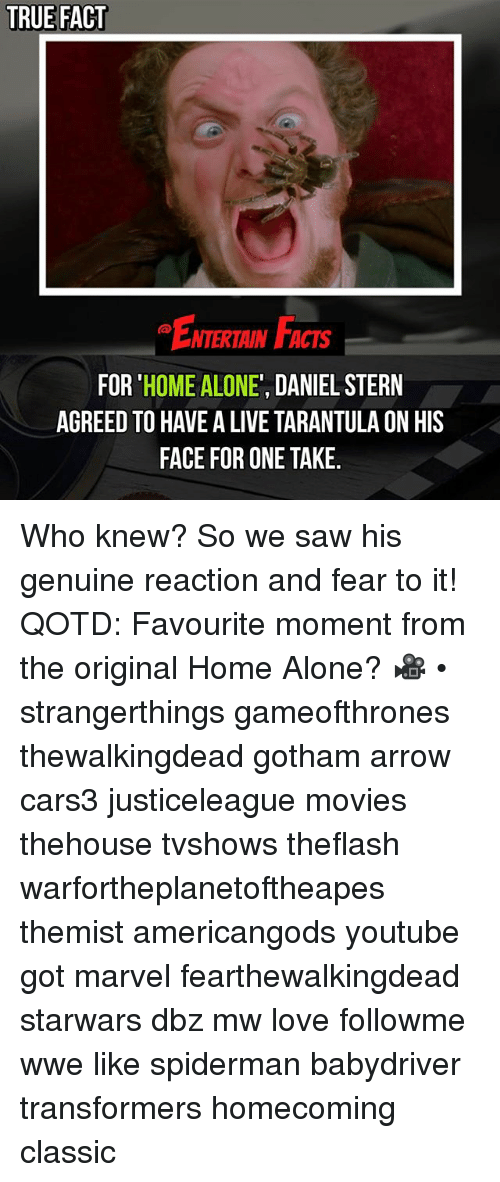 Being Alone, Facts, and Home Alone: TRUE FACT  ENTERTAIN FACTS  FOR 'HOME ALONE', DANIEL STERN  AGREED TO HAVE A LIVE TARANTULA ON HIS  FACE FOR ONE TAKE. Who knew? So we saw his genuine reaction and fear to it! QOTD: Favourite moment from the original Home Alone? 🎥 • strangerthings gameofthrones thewalkingdead gotham arrow cars3 justiceleague movies thehouse tvshows theflash warfortheplanetoftheapes themist americangods youtube got marvel fearthewalkingdead starwars dbz mw love followme wwe like spiderman babydriver transformers homecoming classic