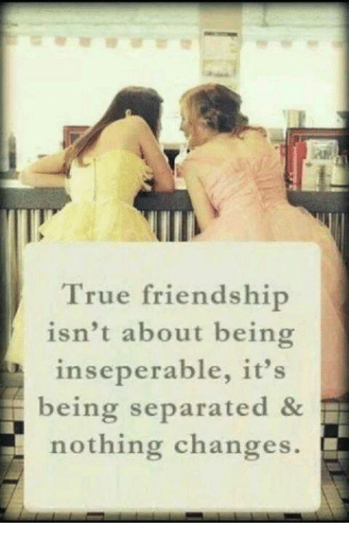Image result for true friendship memes
