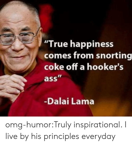 """Omg, True, and Tumblr: """"True happiness  comes from snorting  coke off a hooker's  ass  Dalai Lama omg-humor:Truly inspirational. I live by his principles everyday"""