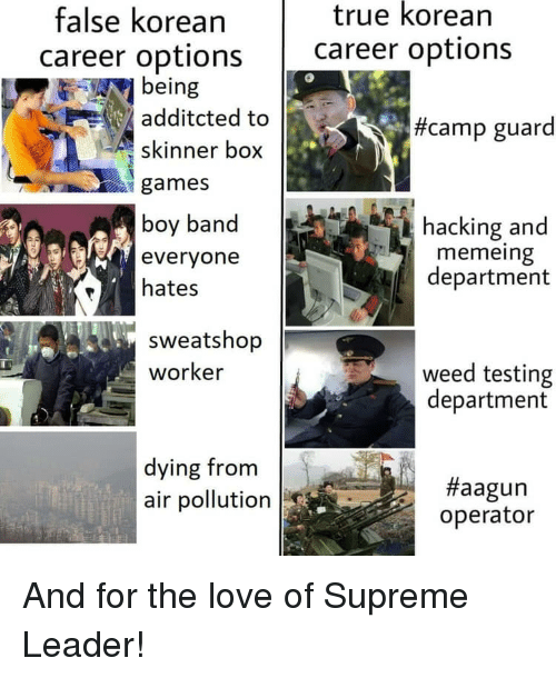 Funny, Love, and Supreme: true korean  false korean  career options career options  being  additcted to  skinner box  #camp guard  games  boy band  everyone  hates  hacking and  memeing  department  sweatshop  worker  weed testing  department  dying from  air pollution  #aagun  operator