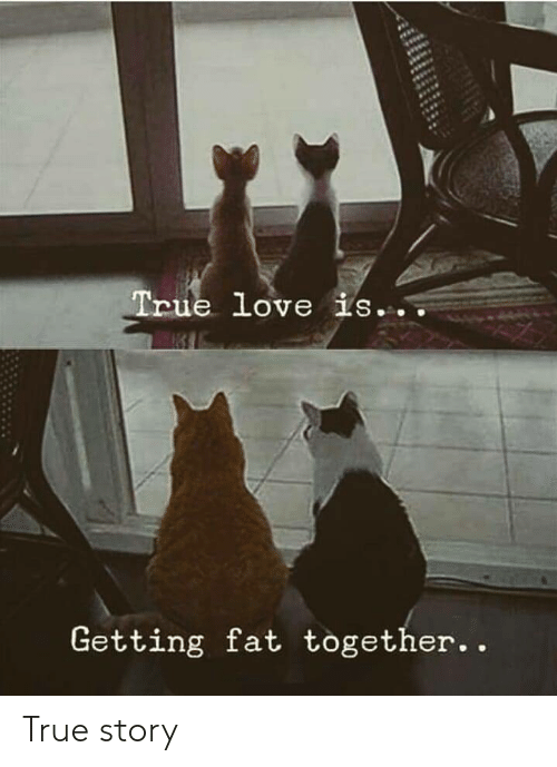 Love, True, and True Story: True love is...  Getting fat together True story