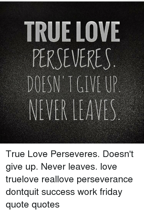 True Love Perseveres Doesn Give Up Never Leaves True Love Perseveres