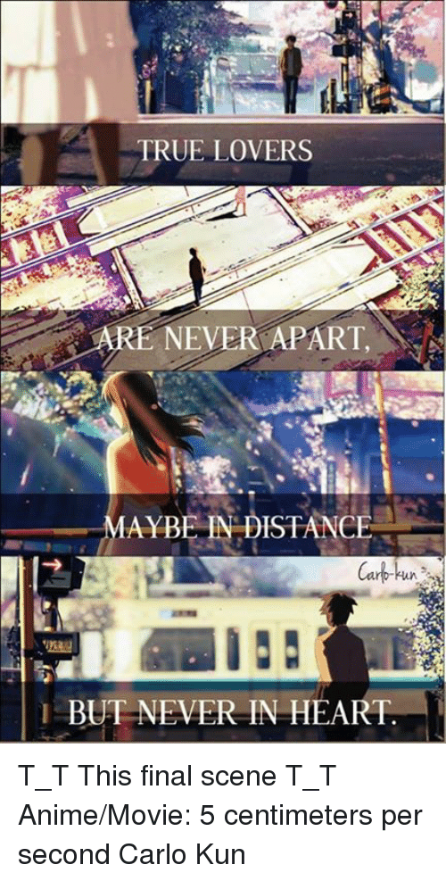 Anime Memes And True True Lovers Re Never Apart Mayrer Distance Cark T_t This Final Scene T_t Anime Movie 5 Centimeters Per Second
