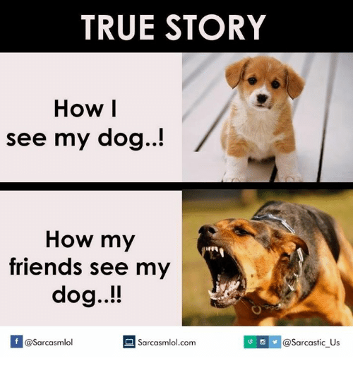 true story how i see my dog how my friends see my dog if