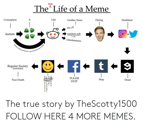 Dank, Life, and Meme: true  The Life of a Meme  Conception  Life  Golden Years  Dieing  Deathbed  me irl  Autism  (can come from anywhere)  in reddit  r/dankmemes  Prodosed a good  Regular Society  (normies)  PLEASE  STOP  True Death  Stop  Dead The true story by TheScotty1500 FOLLOW HERE 4 MORE MEMES.