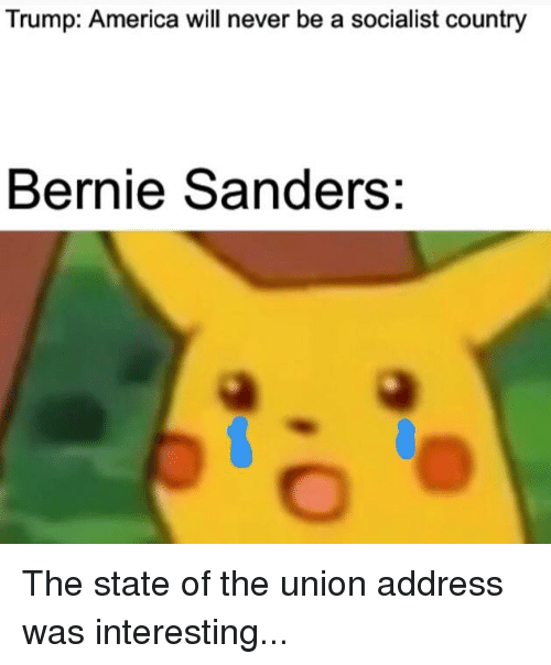 America, Bernie Sanders, and Politics: Trump: America will never be a socialist country  Bernie Sanders: The state of the union address was interesting...