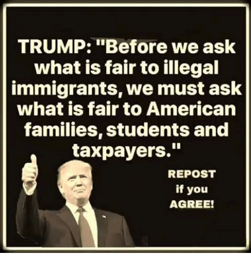 "Memes, American, and Trump: TRUMP: ""Before we ask  what is fair to illegal  immigrants, we must ask  what is fair to American  families, students and  taxpayers.""  REPOST  if you  AGREE!"
