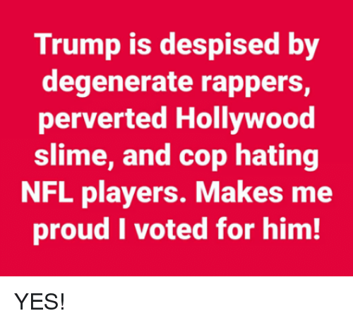 Nfl, Trump, and Proud: Trump is despised by  degenerate rappers,  perverted Hollywood  slime, and cop hating  NFL players. Makes me  proud I voted for him! YES!