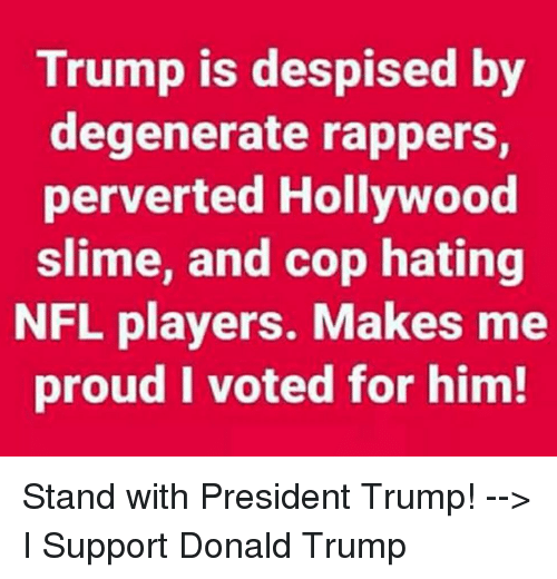 Donald Trump, Nfl, and Trump: Trump is despised by  degenerate rappers,  perverted Hollywood  slime, and cop hating  NFL players. Makes me  proud I voted for him! Stand with President Trump! --> I Support Donald Trump