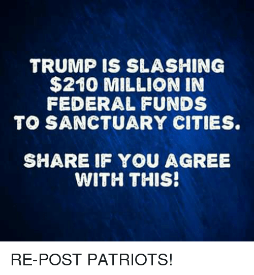 Memes, Patriotic, and Trump: TRUMP IS SLASHING  $210 MILLION IN  FEDERAL FUNDS  TO SANCTUARY CITIES  SHARE IF YOU AGREE  WITH THIS! RE-POST PATRIOTS!