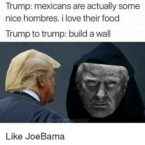 Trump Build A Wall