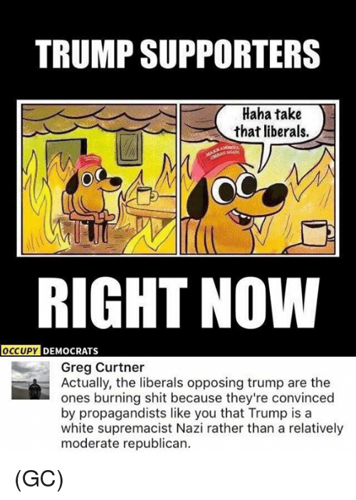 Memes, Shit, and Trump: TRUMP SUPPORTERS  Haha take  that liberals.  RIGHT NOW  OCCUPY DEMOCRATS  Greg Curtner  Actually, the liberals opposing trump are the  ones burning shit because they're convinced  by propagandists like you that Trump is a  white supremacist Nazi rather than a relatively  moderate republican (GC)