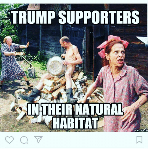 trump-supporters-intheirinatural-habitat-memes-co-16260179.png