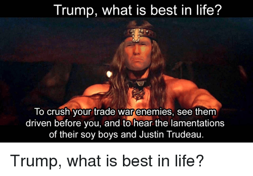 Crush, Life, and Best: Trump, what is best in life?  lo crush your trade war enemies, see them  driven before you, and to hear the lamentations  of their soy boys and Justin Trudeau. Trump, what is best in life?