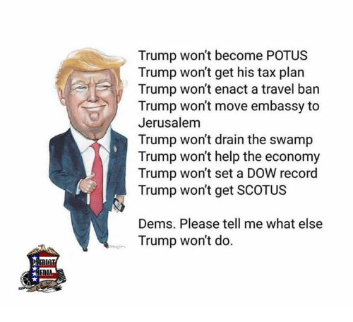 Memes, Help, and Record: Trump won't become POTUS  Trump won't get his tax plan  Trump won't enact a travel ban  Trump won't move embassy to  Jerusalem  Trump won't drain the swamp  Trump won't help the economy  Trump won't set a DOW record  Trump won't get SCOTUS  Dems. Please tell me what else  Trump won't do.