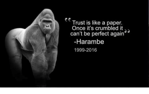 Harambe, Once, And Paper: Trust Is Like A Paper. Once Itu0027s Crumbled