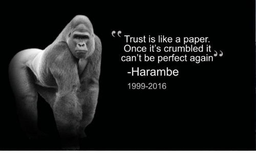 Trust Is Like A Paper Once Its Crumbled It Cant Be Perfect Again