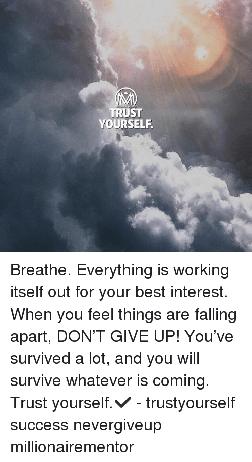 Memes, Best, and Success: TRUST  YOURSELF Breathe. Everything is working itself out for your best interest. When you feel things are falling apart, DON'T GIVE UP! You've survived a lot, and you will survive whatever is coming. Trust yourself.✔️ - trustyourself success nevergiveup millionairementor