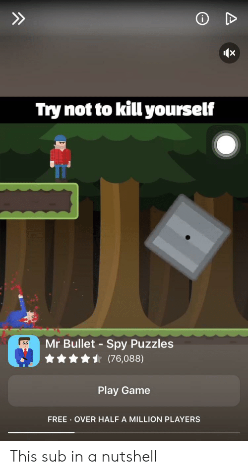 Try Not to Kill Yourself Mr Bullet Spy Puzzles 76088 Play