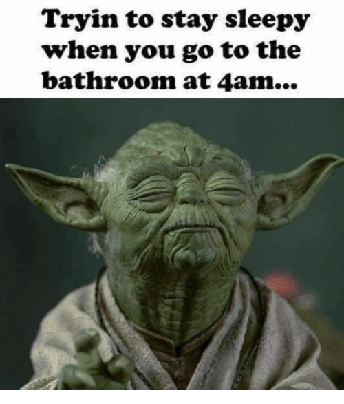 You, Stay, and Sleepy: Tryin to stay sleepy  when you go to the  bathroom at 4am...