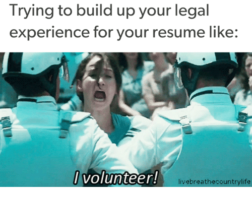 trying to build up your legal experience for your resume like