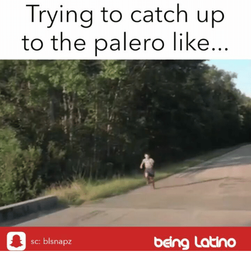 Memes, 🤖, and Latino: Trying to catch up  to the palero like  sc: blsnapz  being Latino