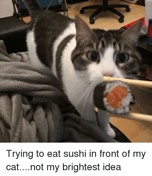 Sushi And Sushi Meme On Meme