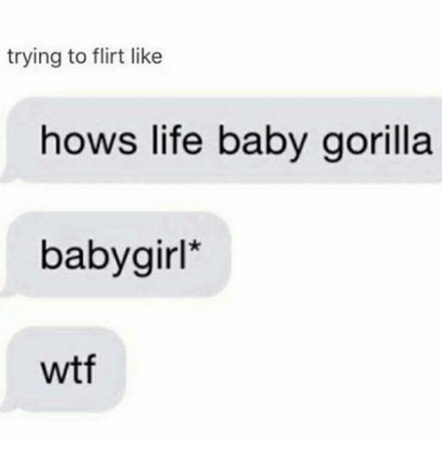 Life, Memes, and Wtf: trying to flirt like  hows life baby gorilla  baby girl  wtf