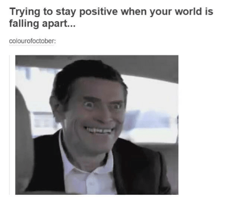 Search Positive Memes On SIZZLE