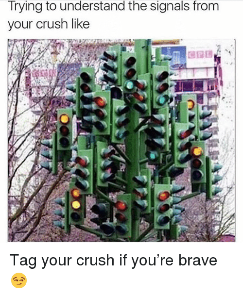 Crush, Memes, and Brave: Trying to understand the signals from  your crush like Tag your crush if you're brave 😏