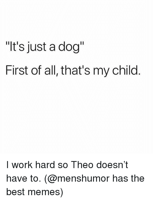 """Memes, Work, and Best: """"t's just a dog""""  First of all, that's my child I work hard so Theo doesn't have to. (@menshumor has the best memes)"""