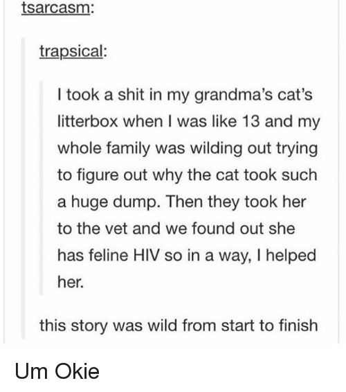 Cats, Family, and Memes: tsarcasm:  trapsical:  I took a shit in my grandma's cat's  litterbox when I was like 13 and my  whole family was wilding out trying  to figure out why the cat took such  a huge dump. Then they took her  to the vet and we found out she  has feline HIV so in a way, I helped  her.  this story was wild from start to finish Um Okie
