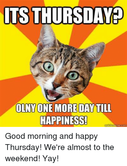 Tsthursday Olny One More Day Till Happiness Meme Com Good Morning And Happy Thursday We Re Almost To The Weekend Yay Meme On Me Me With tenor, maker of gif keyboard, add popular yay meme animated gifs to your conversations. till happiness meme com good morning