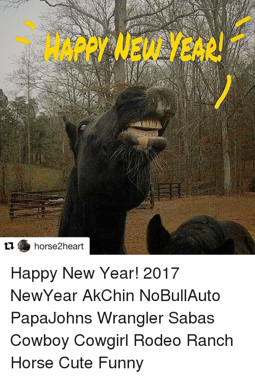 Happy New Year Horse Images 57