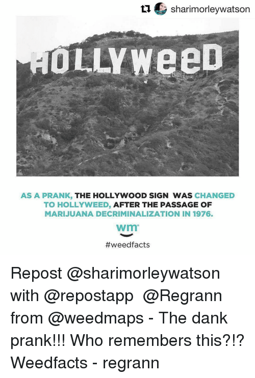 57d2353017db tu-sharimorleywatson-ollyweed-as-a-prank-the-hollywood-sign-was-8840454.png