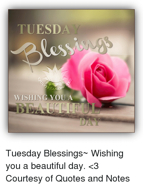 Tuesda Les Wishing You A Tuesday Blessings Wishing You A Beautiful