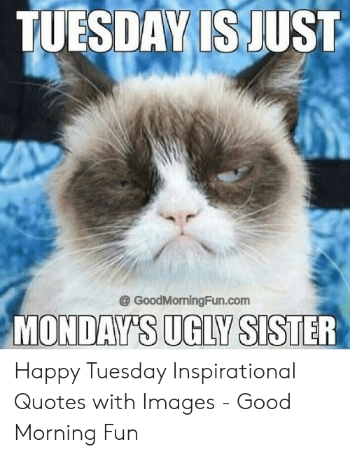 TUESDAY IS JUST MONDAY\'S UGLY SISTER Happy Tuesday ...