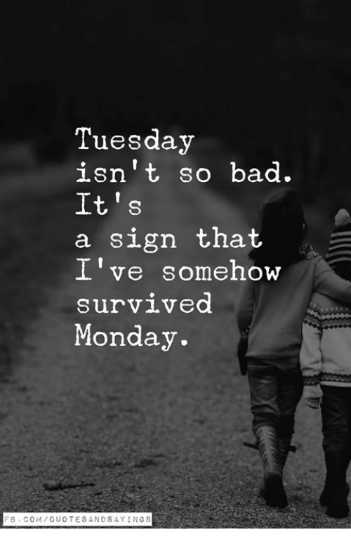 Bad, Monday, and Com: Tuesday  isn't so bad.  It's  a sign that  I've somehow  survived  Monday.  F8. COM/QUOTESANDSAYINGS