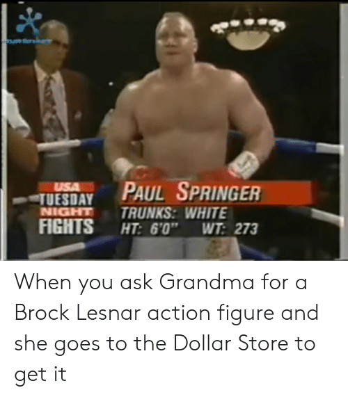 """Grandma, Brock, and Brock-Lesnar: TUESDAY PAUL SPRINGER  NIGHTTRUNKS: WHITE  FIGHTS HT: 6'0"""" WT 273 When you ask Grandma for a Brock Lesnar action figure and she goes to the Dollar Store to get it"""