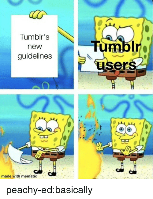 Tumblr, Blog, and Com: Tumblr's  new  guidelines  Ir  ers  made with mematic peachy-ed:basically