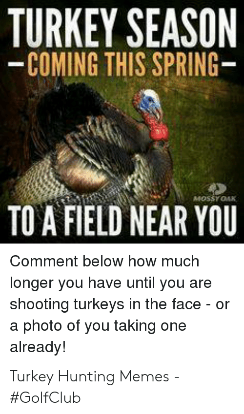 52 Best Turkey Funny Images Turkey Hunting Hunting Humor