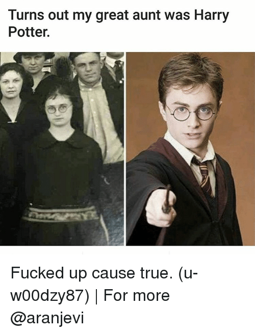 Harry Potter, Memes, and 🤖: Turns out my great aunt was Harry Potter