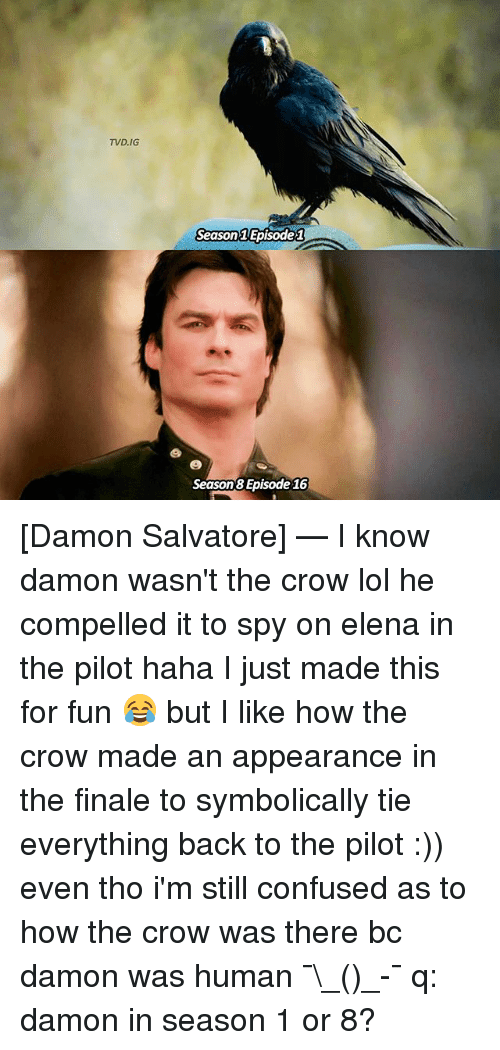 Confused, Lol, and Memes: TVD, IG  Season Episode 1  Season Episode 16 [Damon Salvatore] — I know damon wasn't the crow lol he compelled it to spy on elena in the pilot haha I just made this for fun 😂 but I like how the crow made an appearance in the finale to symbolically tie everything back to the pilot :)) even tho i'm still confused as to how the crow was there bc damon was human ¯\_(ツ)_-¯ q: damon in season 1 or 8?