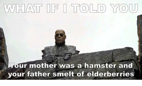 Mother Was A Hamster