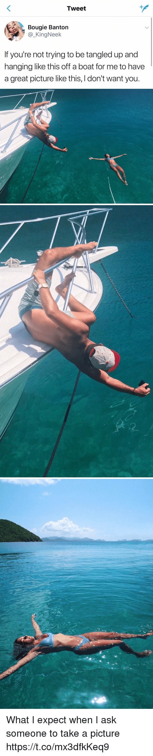 Girl Memes, Tangled, and A Picture: Tweet  Bouaie Banton  @_KingNeek  If you're not trying to be tangled up and  hanging like this off a boat for me to have  a great picture like this, I don't want you What I expect when I ask someone to take a picture https://t.co/mx3dfkKeq9
