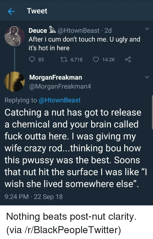 """Blackpeopletwitter, Crazy, and Cum: Tweet  Deuce@HtownBeast 2d  After i cum don't touch me. U ugly and  it's hot in here  85  4,718  14.2K  MorganFreakman  @MorganFreakman4  Replying to @HtownBeast  Catching a nut has got to release  a chemical and vour brain called  fuck outta here. I was giving my  wife crazy rod...thinking bou how  this pwussy was the best. Soons  that nut hit the surface I was like """"I  wish she lived somewhere else  9:24 PM 22 Sep 18 Nothing beats post-nut clarity. (via /r/BlackPeopleTwitter)"""