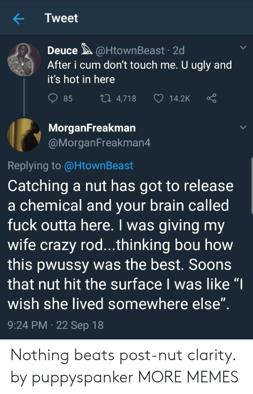 """Crazy, Cum, and Dank: Tweet  Deuce@HtownBeast 2d  After i cum don't touch me. U ugly and  it's hot in here  85  4,718  14.2K  MorganFreakman  @MorganFreakman4  Replying to @HtownBeast  Catching a nut has got to release  a chemical and vour brain called  fuck outta here. I was giving my  wife crazy rod...thinking bou how  this pwussy was the best. Soons  that nut hit the surface I was like """"I  wish she lived somewhere else  9:24 PM 22 Sep 18 Nothing beats post-nut clarity. by puppyspanker MORE MEMES"""
